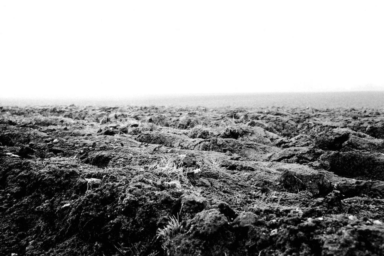"""""""Acey earth"""", Histoires, 2004"""